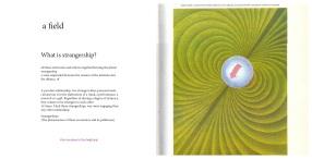 book maps critique15